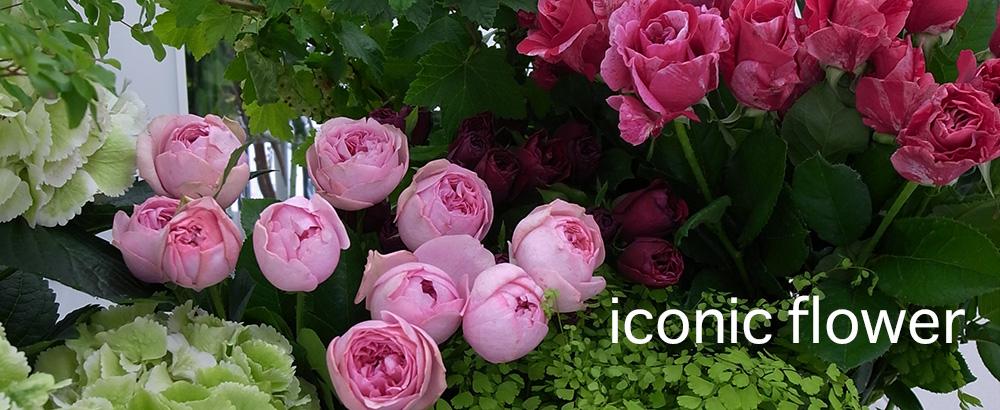 iconicflower